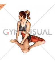 Sitting Rotational Hip Stretch