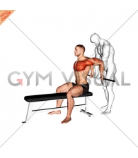 Assisted Sitting Reverse Shoulder Stretch