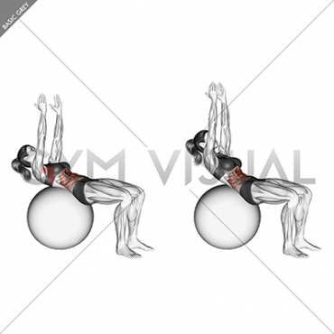 Crunch (on stability ball, arms straight)