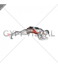 Weighted Front Plank