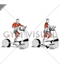 Walk Elliptical Cross Trainer