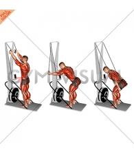 Ski Ergometer