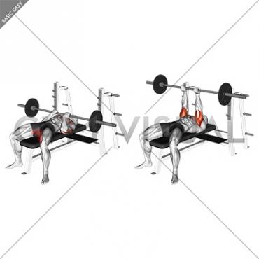 Barbell Reverse Close Grip Bench Press
