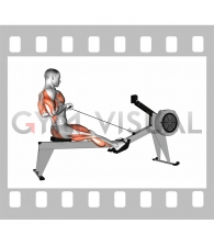 Rowing (with rowing machine)