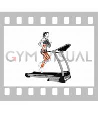 Run on Treadmill (female)