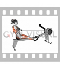 Rowing Straight Back (with rowing machine) (female)