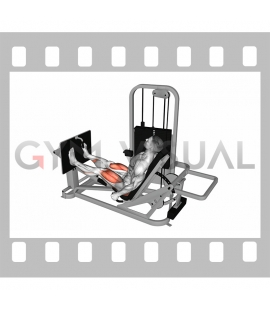 Lever Seated Leg Press