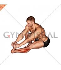 Sitting Toe Pull Calf Stretch