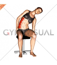 Sitting Lateral Side Stretch