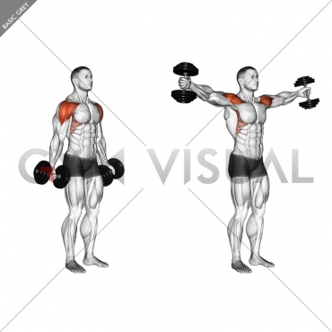 Dumbbell Full Can Lateral Raise