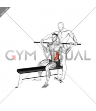 Assisted Obliques Stretch