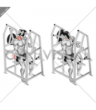 Lever Neck Right Side Flexion (plate loaded)