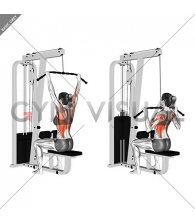 Cable Wide-Grip Lat Pulldown (female)