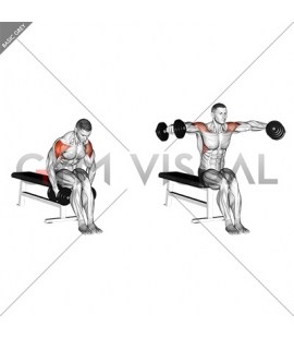 Dumbbell Seated Bent Arm Lateral raise