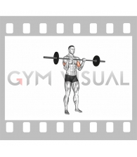 Barbell Reverse Curl