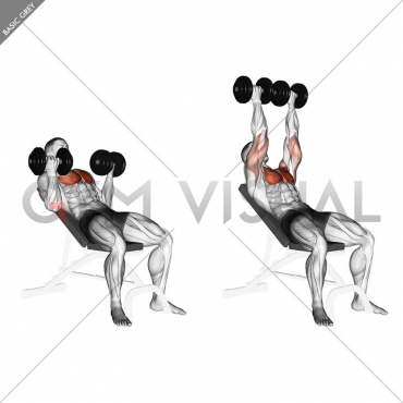 Dumbbell Incline Palm-in Press