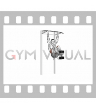 Weighted Hanging leg hip raise