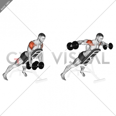 Dumbbell Incline Rear Lateral Raise
